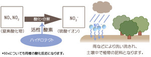 hydrotect_joka_02.jpg
