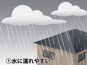 sk_premium_roof_01_1.jpg